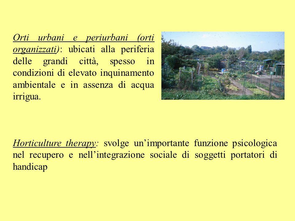 Orti urbani e periurbani (orti organizzati): ubicati alla periferia delle grandi città, spesso in condizioni di elevato inquinamento ambientale e in a