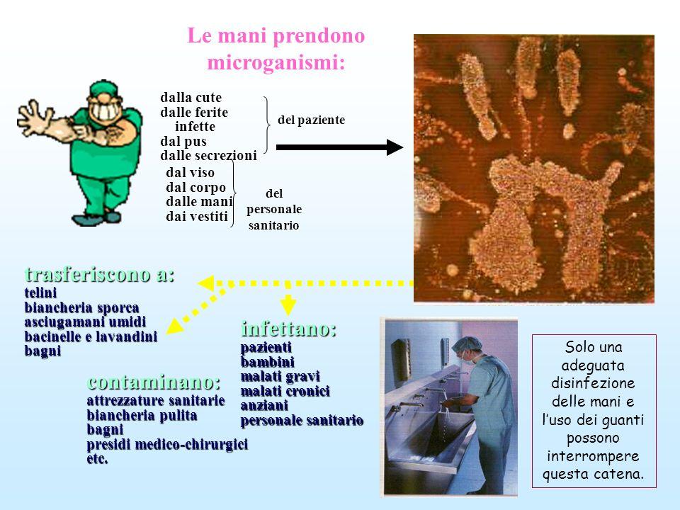 infettano:pazientibambini malati gravi malati cronici anziani personale sanitario trasferiscono a: telini biancheria sporca asciugamani umidi bacinell