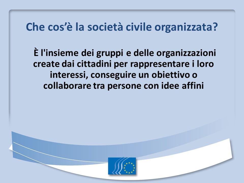 Che cosè la società civile organizzata? È l'insieme dei gruppi e delle organizzazioni create dai cittadini per rappresentare i loro interessi, consegu