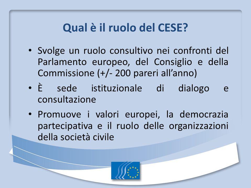 Qual è il ruolo del CESE? Svolge un ruolo consultivo nei confronti del Parlamento europeo, del Consiglio e della Commissione (+/- 200 pareri allanno)