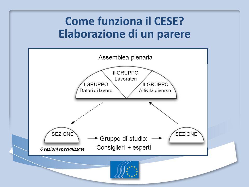 Come funziona il CESE? Elaborazione di un parere 6 sezioni specializzate Assemblea plenaria II GRUPPO Lavoratori I GRUPPO Datori di lavoro III GRUPPO