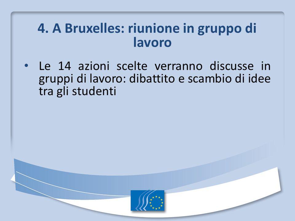 4. A Bruxelles: riunione in gruppo di lavoro Le 14 azioni scelte verranno discusse in gruppi di lavoro: dibattito e scambio di idee tra gli studenti
