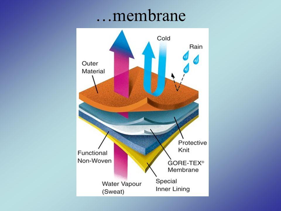 …membrane