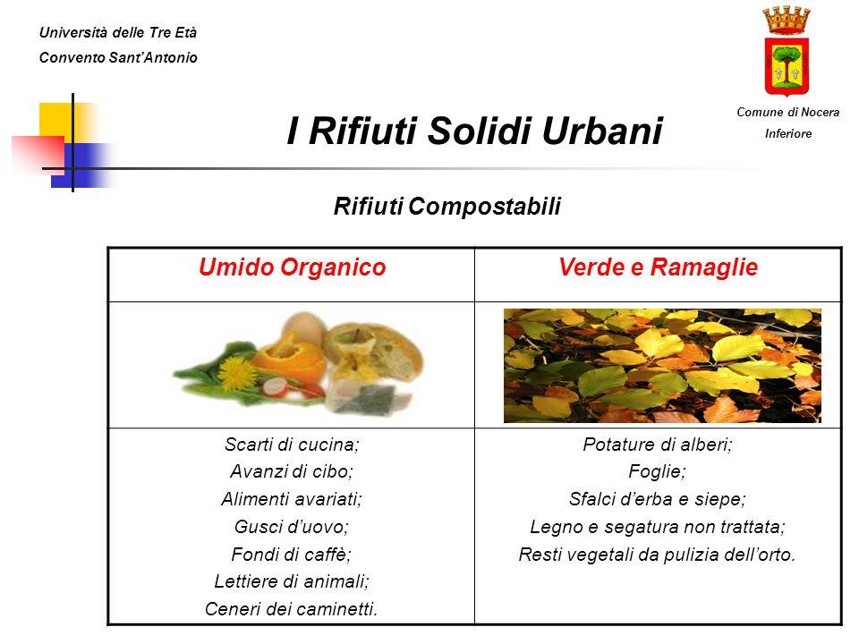 I Rifiuti Solidi Urbani Rifiuti Compostabili Umido OrganicoVerde e Ramaglie Scarti di cucina; Avanzi di cibo; Alimenti avariati; Gusci duovo; Fondi di