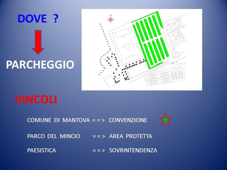 DOVE ? VINCOLI COMUNE DI MANTOVA = = > CONVENZIONE PARCO DEL MINCIO = = > AREA PROTETTA PAESISTICA = = > SOVRINTENDENZA PARCHEGGIO