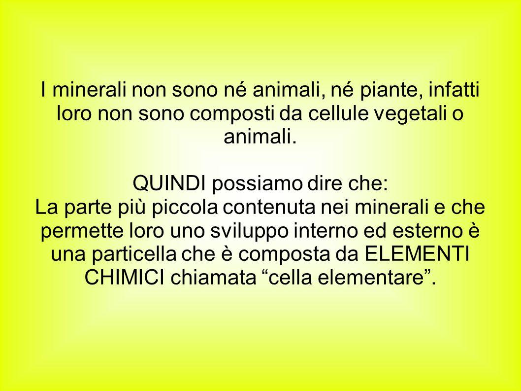 I minerali non sono né animali, né piante, infatti loro non sono composti da cellule vegetali o animali. QUINDI possiamo dire che: La parte più piccol