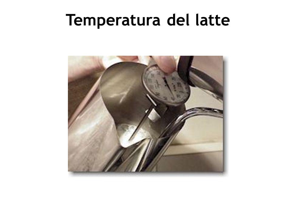 La temperatura del caffè espresso nella tazza da cappuccino è di circa 75°C, perfetta per mantenere correttamente persistente la crema in superficie e per proteggere le componenti aromatiche prodotte.