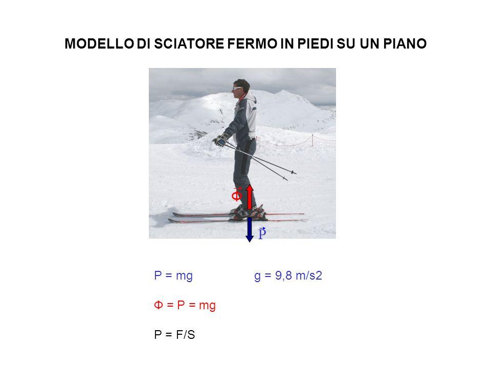 MODELLO DI SCIATORE FERMO IN PIEDI SU UN PIANO P = mg g = 9,8 m/s2 Ф = P = mg P = F/S P Ф