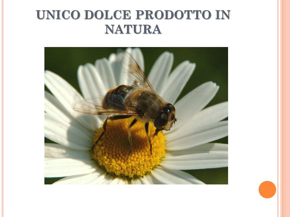 UNICO DOLCE PRODOTTO IN NATURA