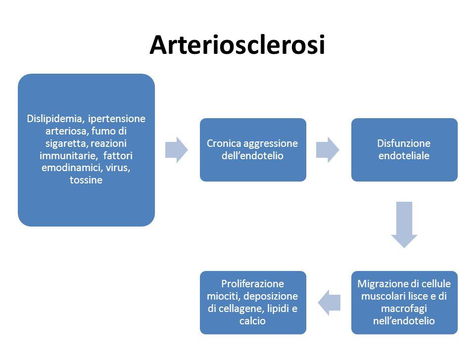 Arteriosclerosi Dislipidemia, ipertensione arteriosa, fumo di sigaretta, reazioni immunitarie, fattori emodinamici, virus, tossine Cronica aggressione
