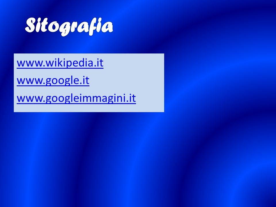 www.wikipedia.it www.google.it www.googleimmagini.it