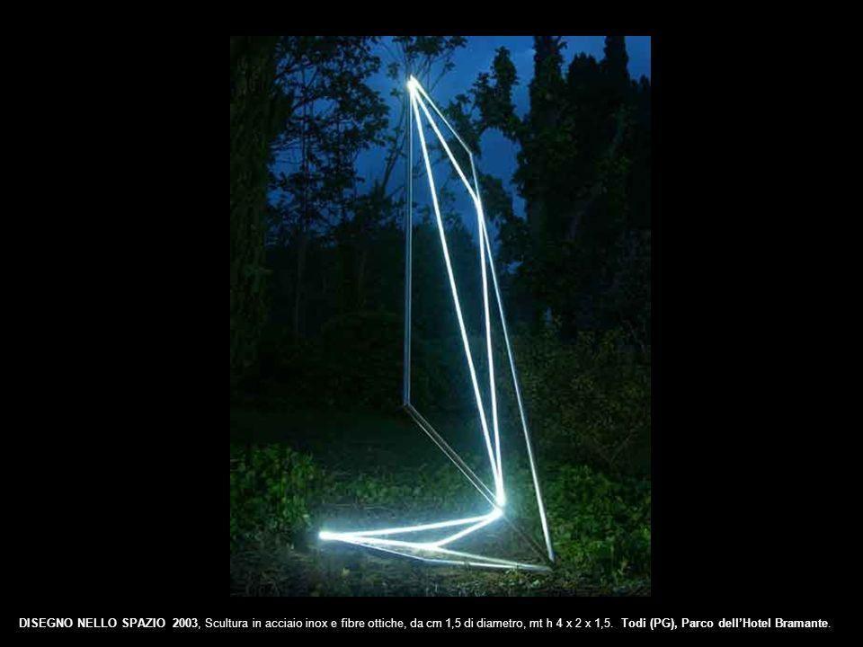 DISEGNO NELLO SPAZIO 2003, Scultura in acciaio inox e fibre ottiche, da cm 1,5 di diametro, mt h 4 x 2 x 1,5. Todi (PG), Parco dellHotel Bramante.