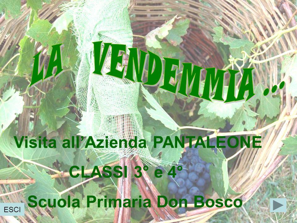 Visita allAzienda PANTALEONE CLASSI 3° e 4° Scuola Primaria Don Bosco ESCI