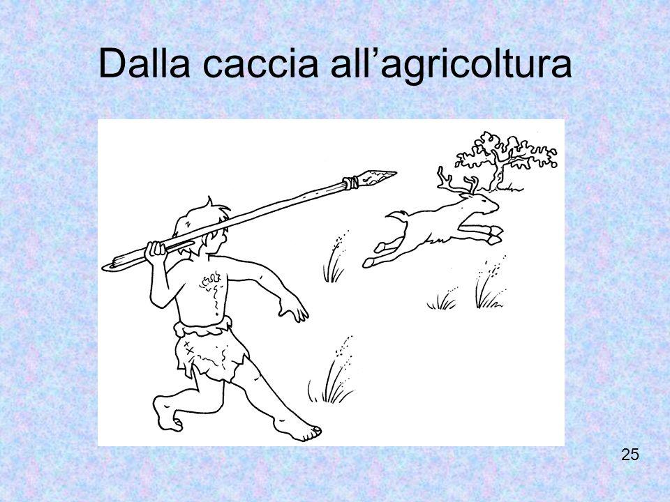 Dalla caccia allagricoltura 25