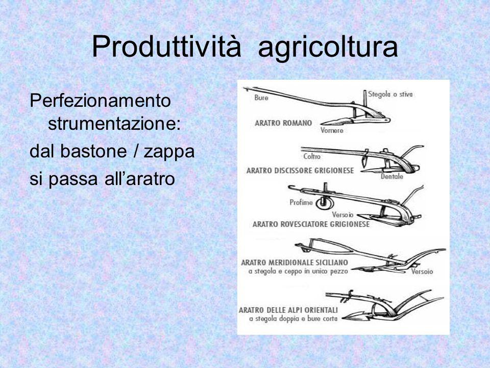 Produttività agricoltura Perfezionamento strumentazione: dal bastone / zappa si passa allaratro