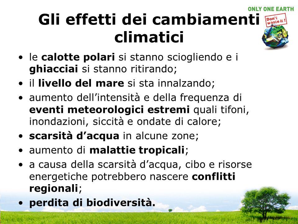 Gli effetti dei cambiamenti climatici le calotte polari si stanno sciogliendo e i ghiacciai si stanno ritirando; il livello del mare si sta innalzando; aumento dellintensità e della frequenza di eventi meteorologici estremi quali tifoni, inondazioni, siccità e ondate di calore; scarsità dacqua in alcune zone; aumento di malattie tropicali; a causa della scarsità dacqua, cibo e risorse energetiche potrebbero nascere conflitti regionali; perdita di biodiversità.