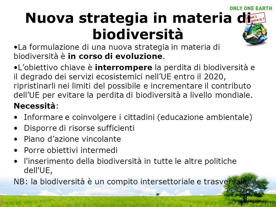 Nuova strategia in materia di biodiversità La formulazione di una nuova strategia in materia di biodiversità è in corso di evoluzione.