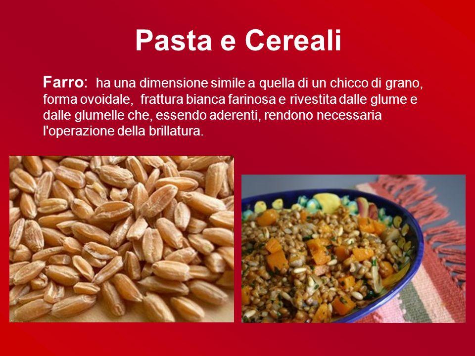 Pasta e Cereali Farro: ha una dimensione simile a quella di un chicco di grano, forma ovoidale, frattura bianca farinosa e rivestita dalle glume e dal