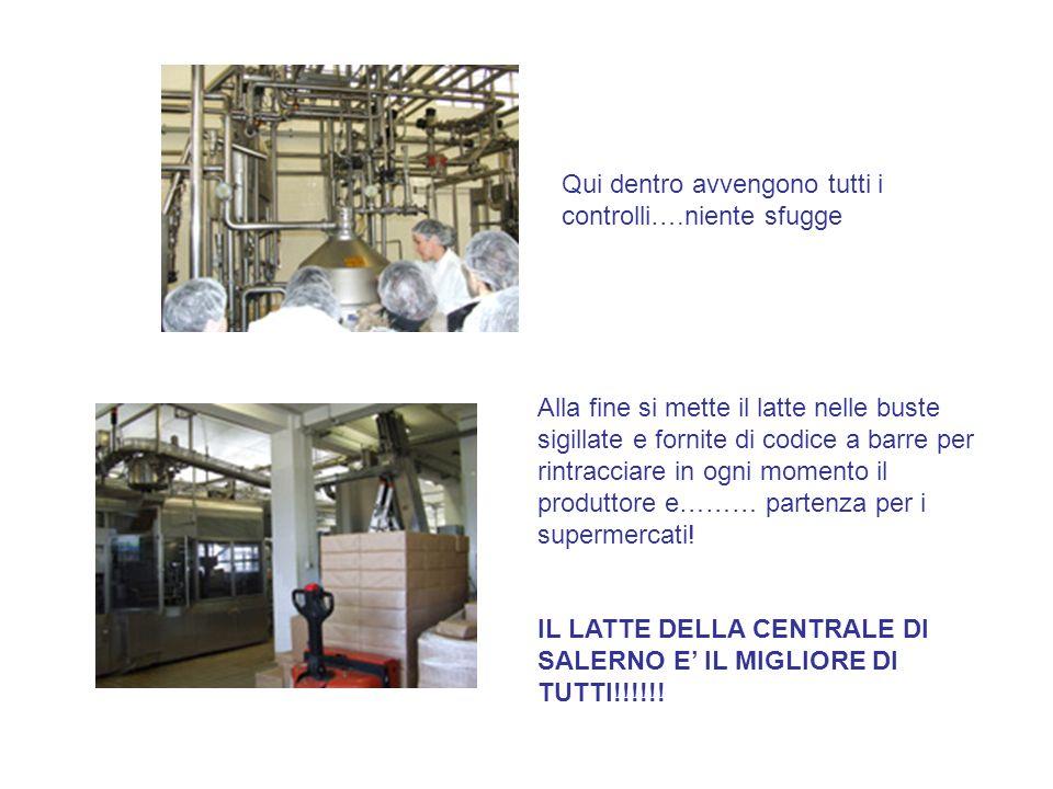 Qui dentro avvengono tutti i controlli….niente sfugge Alla fine si mette il latte nelle buste sigillate e fornite di codice a barre per rintracciare in ogni momento il produttore e……… partenza per i supermercati.