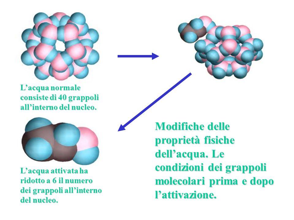 Modifiche delle proprietà fisiche dellacqua. Le condizioni dei grappoli molecolari prima e dopo lattivazione. Lacqua normale consiste di 40 grappoli a