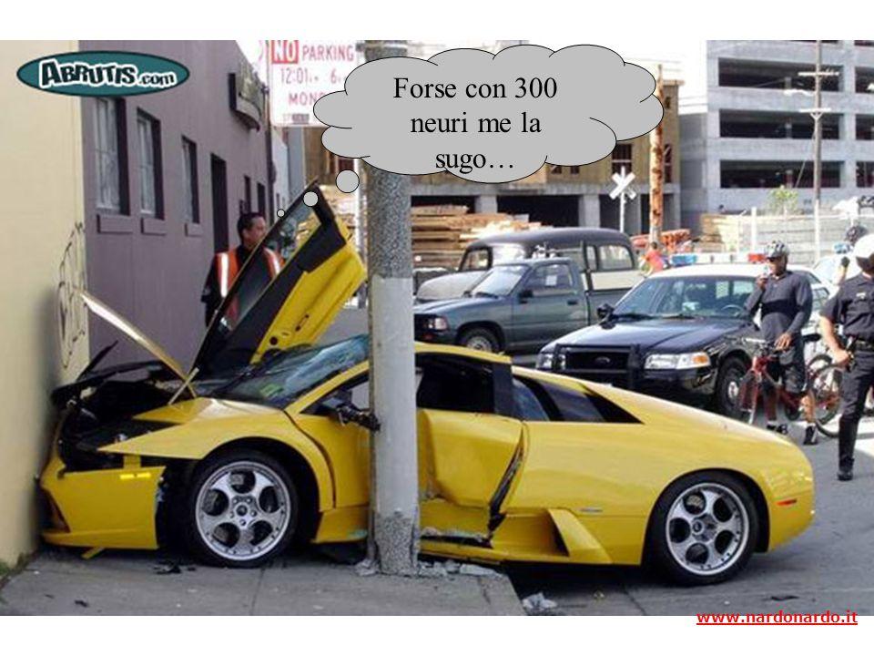 Forse con 300 neuri me la sugo… www.nardonardo.it