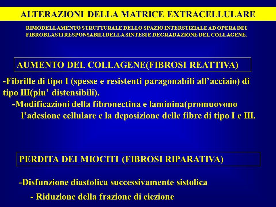 ALTERAZIONI DELLA MATRICE EXTRACELLULARE FIBROBLASTI RESPONSABILI DELLA SINTESI E DEGRADAZIONE DEL COLLAGENE. AUMENTO DEL COLLAGENE(FIBROSI REATTIVA)