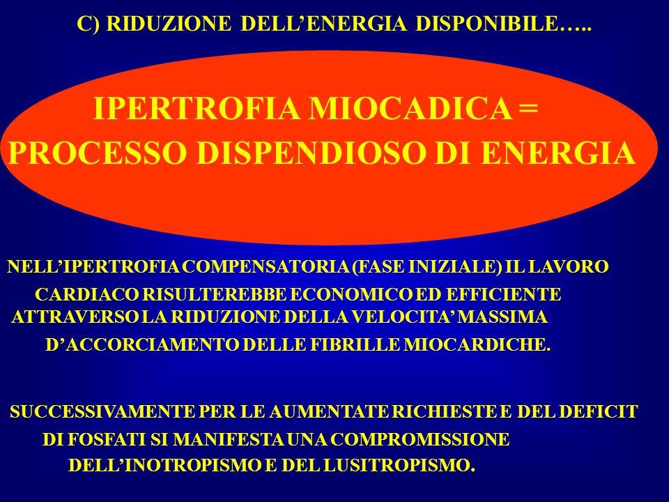 C) RIDUZIONE DELLENERGIA DISPONIBILE….. IPERTROFIA MIOCADICA = PROCESSO DISPENDIOSO DI ENERGIA CARDIACO RISULTEREBBE ECONOMICO ED EFFICIENTE ATTRAVERS