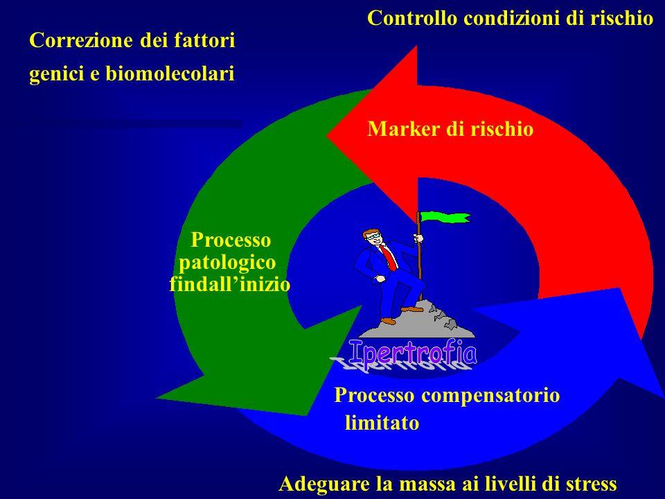 Marker di rischio Controllo condizioni di rischio Adeguare la massa ai livelli di stress Correzione dei fattori genici e biomolecolari Processo patolo