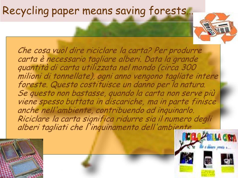 Recycling paper means saving forests… Che cosa vuol dire riciclare la carta? Per produrre carta è necessario tagliare alberi. Data la grande quantità