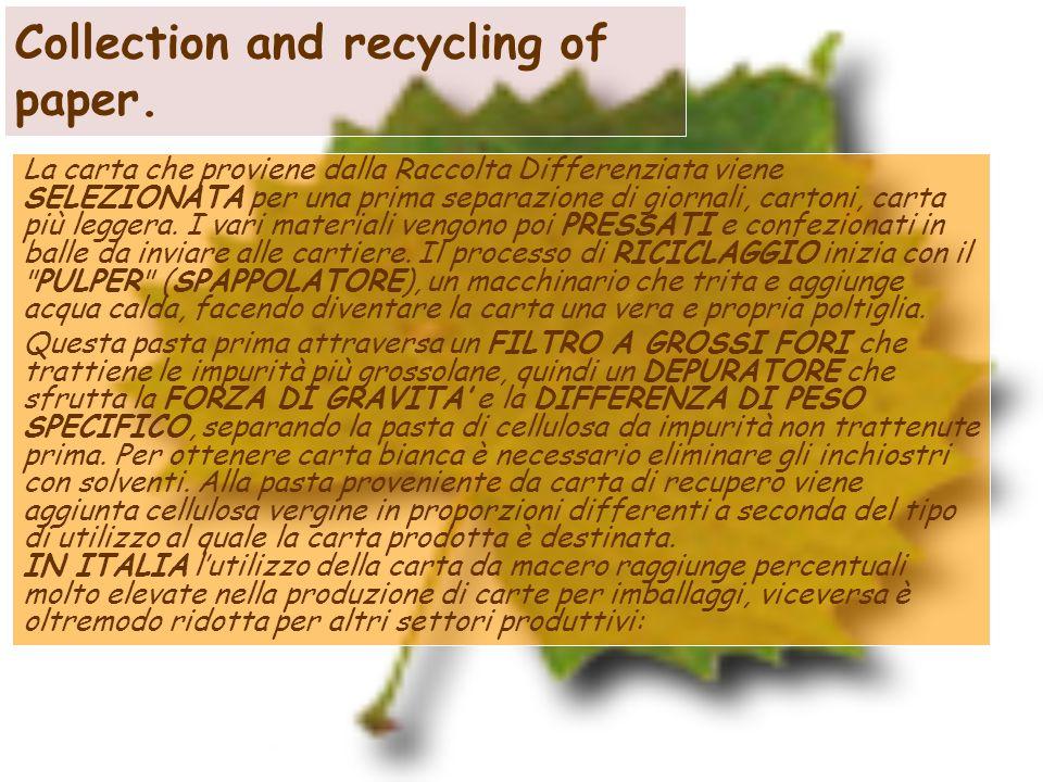 Collection and recycling of paper. La carta che proviene dalla Raccolta Differenziata viene SELEZIONATA per una prima separazione di giornali, cartoni