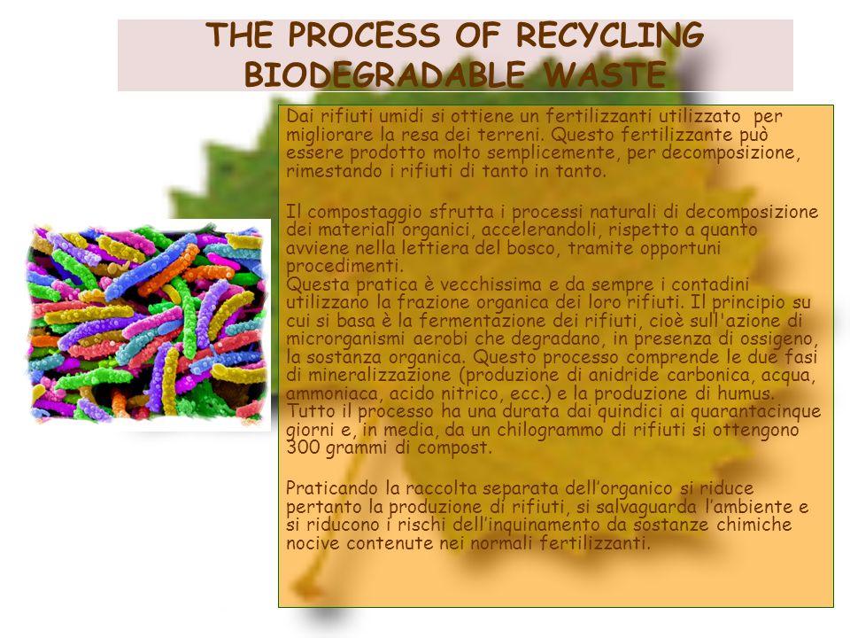 THE PROCESS OF RECYCLING BIODEGRADABLE WASTE Dai rifiuti umidi si ottiene un fertilizzanti utilizzato per migliorare la resa dei terreni. Questo ferti