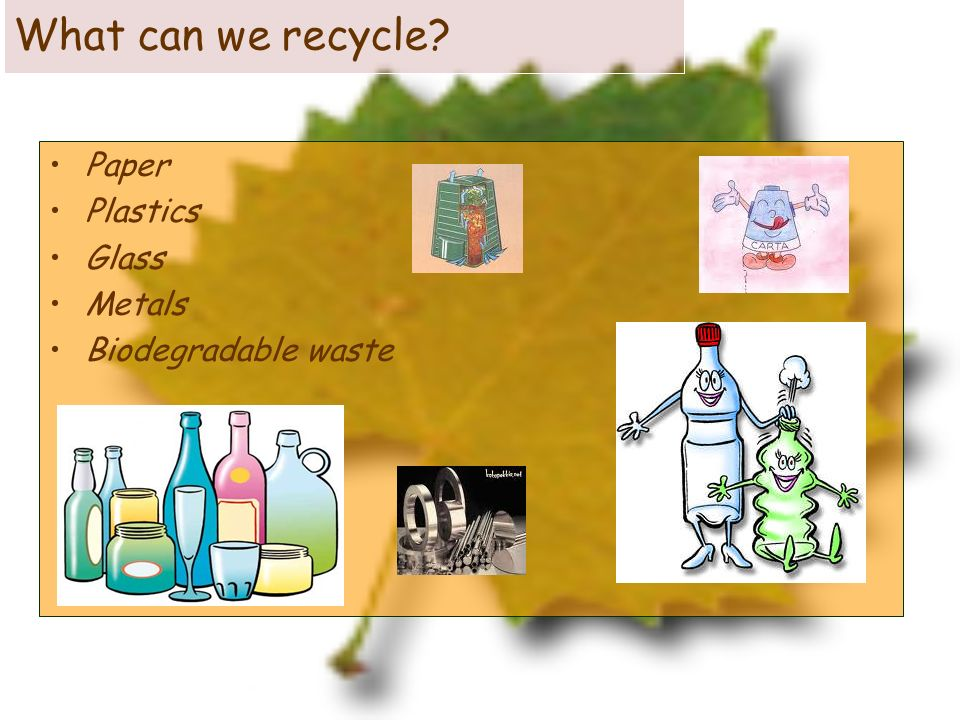 Even garbage has got a soul! Here you are: Giuliathe bottle, Giorgio the newspaper and Tina the can
