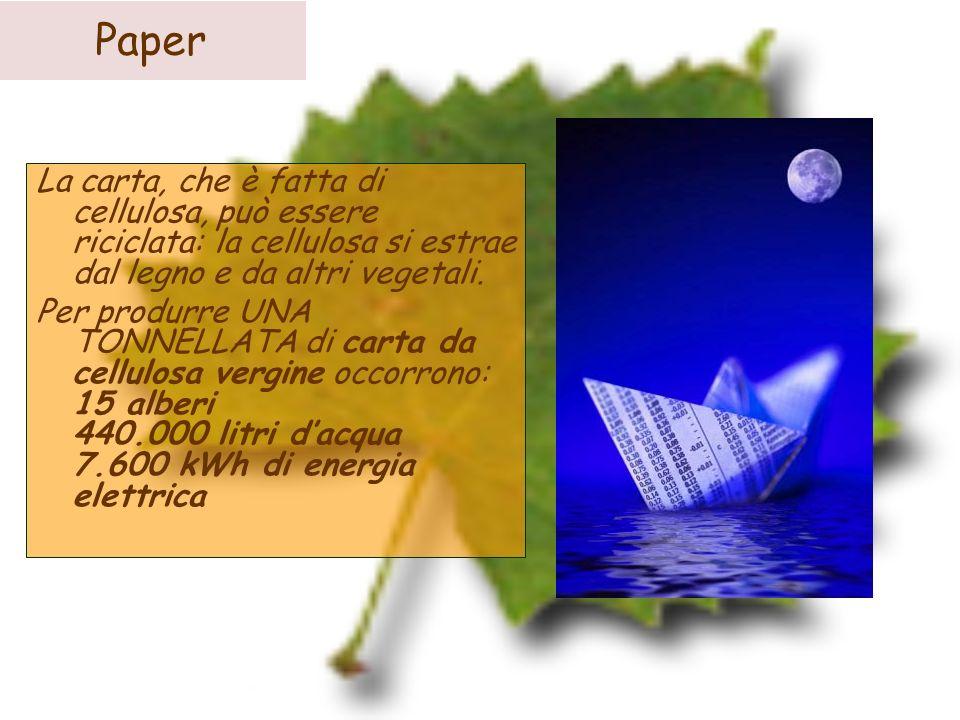 Paper La carta, che è fatta di cellulosa, può essere riciclata: la cellulosa si estrae dal legno e da altri vegetali. Per produrre UNA TONNELLATA di c