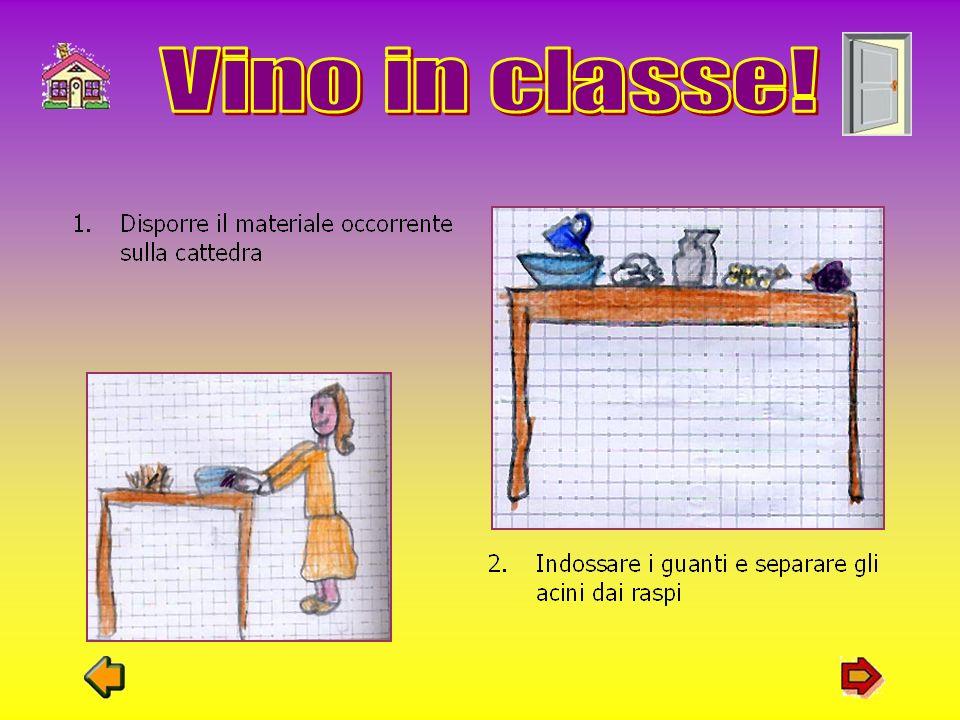 Dopo la visita alla scuola Agraria Pastori, abbiamo deciso di fare il vino in classe. Occorrente: bottiglia di plastica uva bianca uva nera imbuto vas