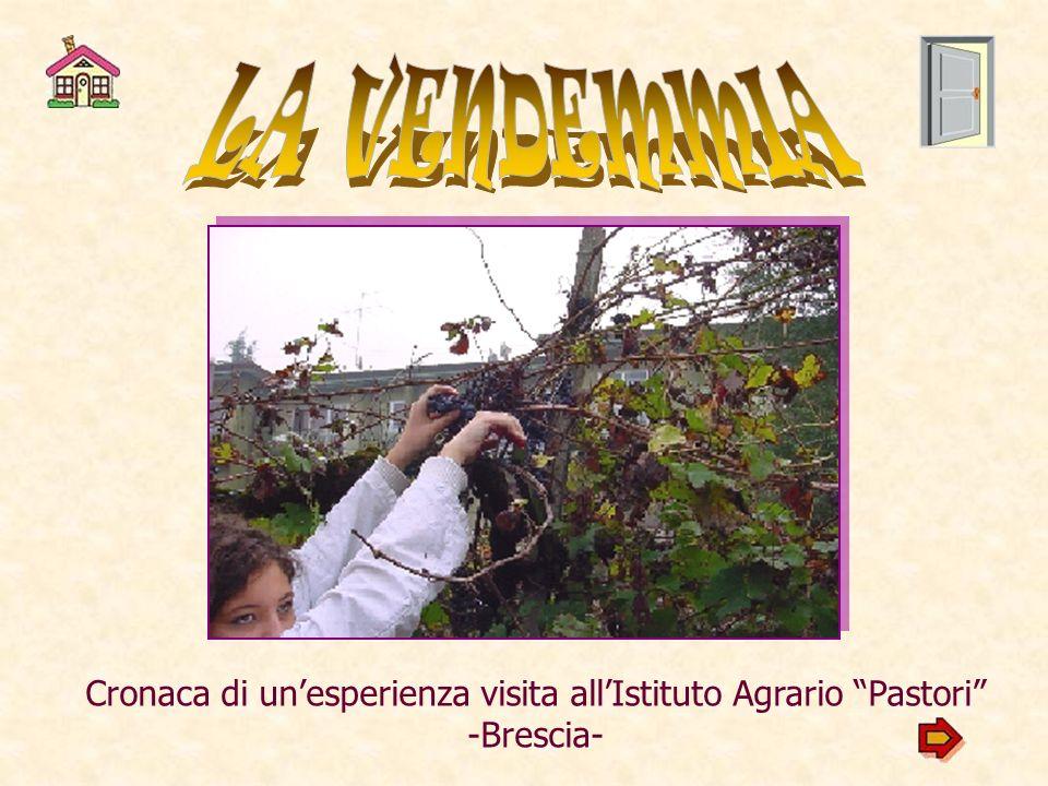 Cronaca di unesperienza visita allIstituto Agrario Pastori -Brescia-