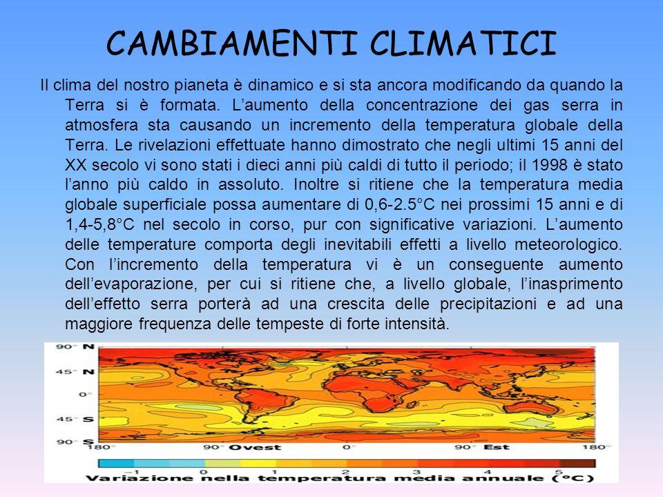 CAMBIAMENTI CLIMATICI Il clima del nostro pianeta è dinamico e si sta ancora modificando da quando la Terra si è formata. Laumento della concentrazion