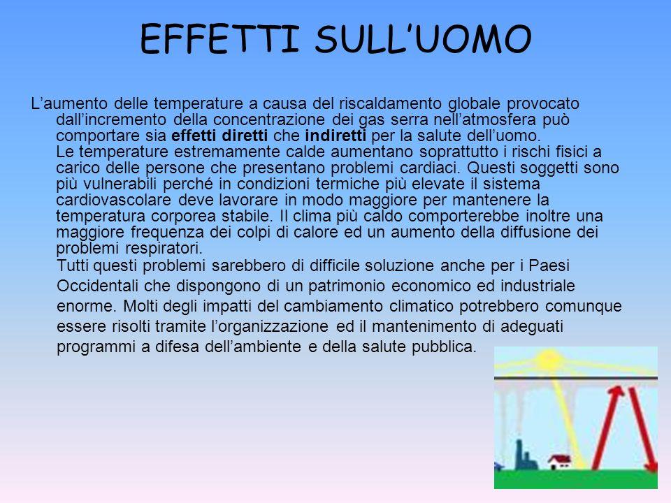 EFFETTI SULLUOMO Laumento delle temperature a causa del riscaldamento globale provocato dallincremento della concentrazione dei gas serra nellatmosfer