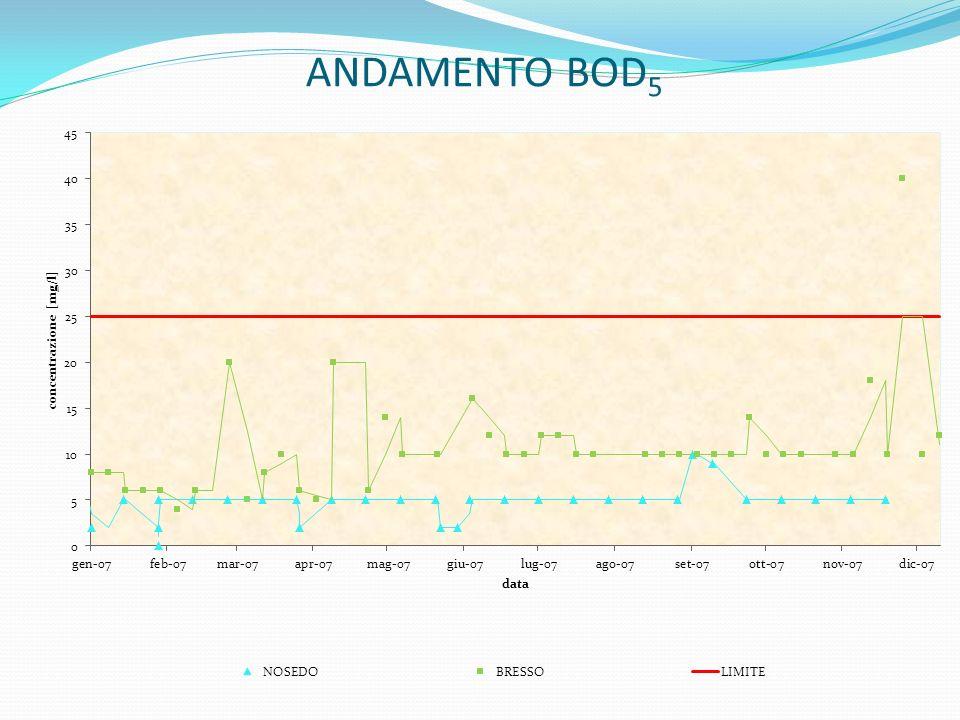 ANDAMENTO BOD 5