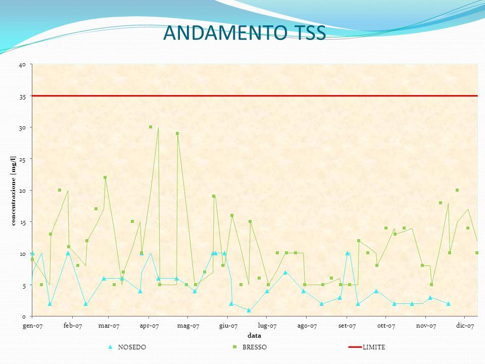 ANDAMENTO TSS