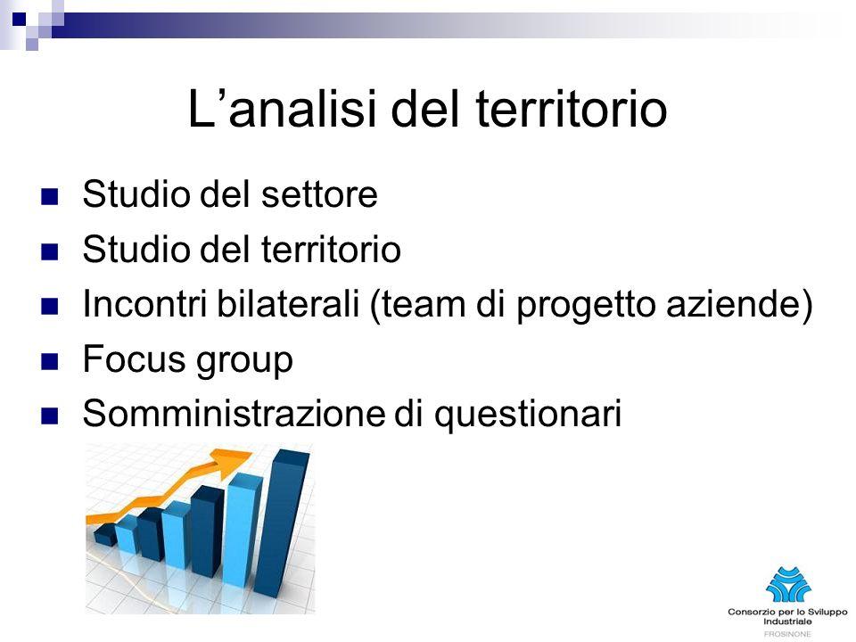 Lanalisi del territorio Studio del settore Studio del territorio Incontri bilaterali (team di progetto aziende) Focus group Somministrazione di questionari