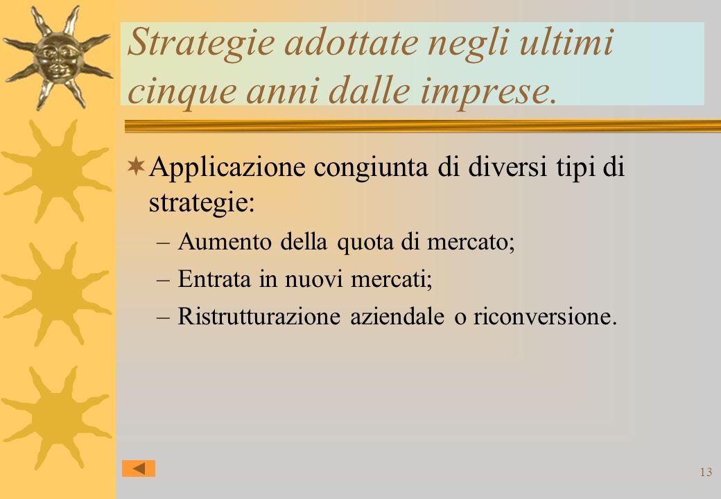 13 Strategie adottate negli ultimi cinque anni dalle imprese.