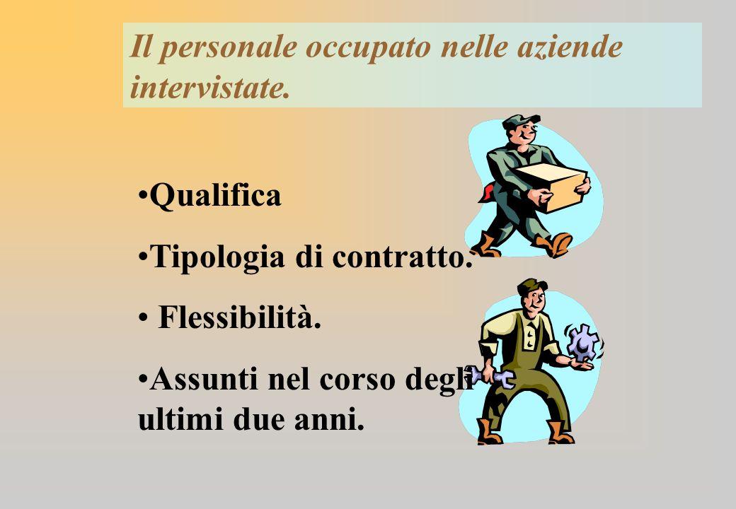 Il personale occupato nelle aziende intervistate. Qualifica Tipologia di contratto.