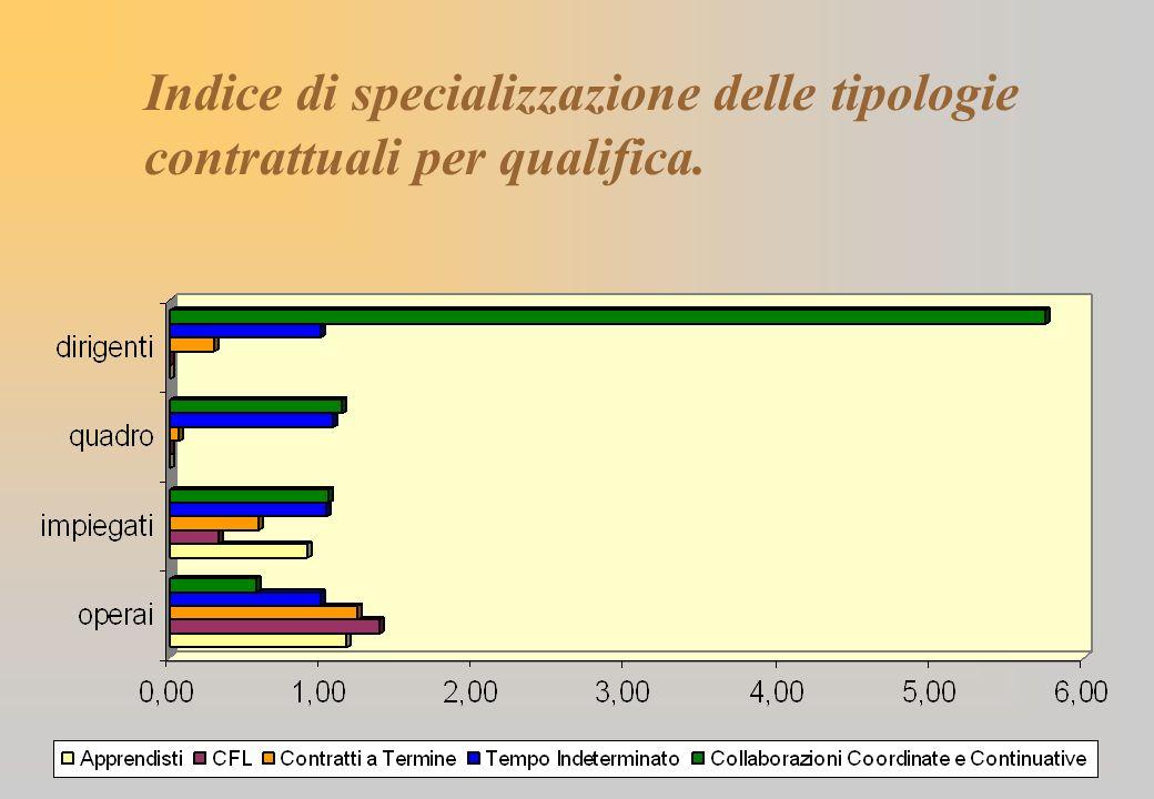 Indice di specializzazione delle tipologie contrattuali per qualifica.