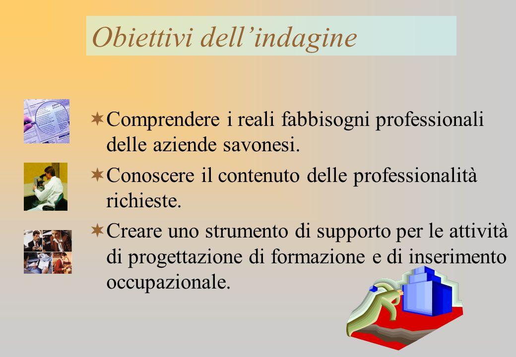 3 Indagine quantitativa (utilizzo di questionario) Indagine qualitativa (interviste ad un campione di imprese) Metodologia utilizzata