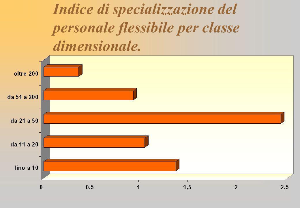 Indice di specializzazione del personale flessibile per classe dimensionale.