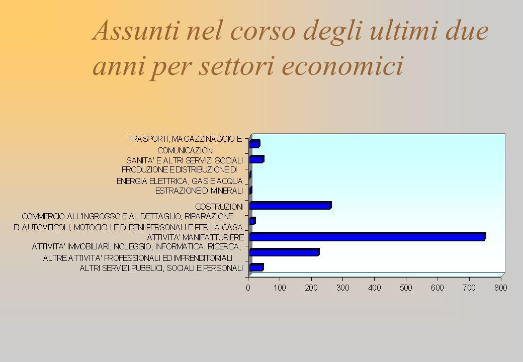 Assunti nel corso degli ultimi due anni per settori economici