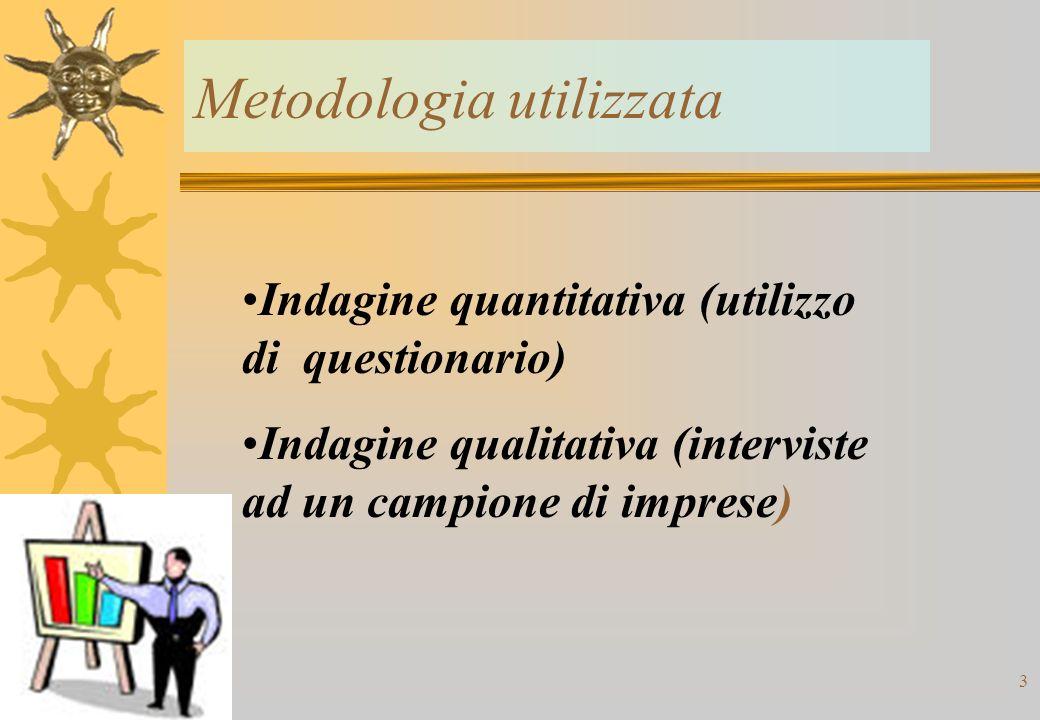 Il personale occupato nelle aziende intervistate.Qualifica Tipologia di contratto.