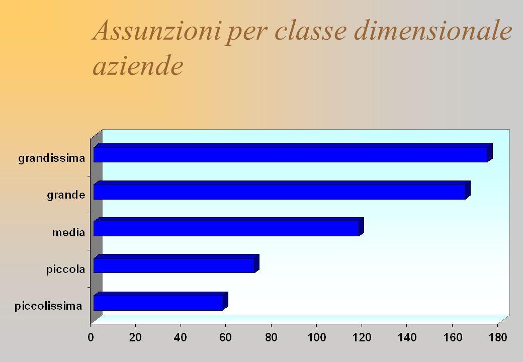 Assunzioni per classe dimensionale aziende