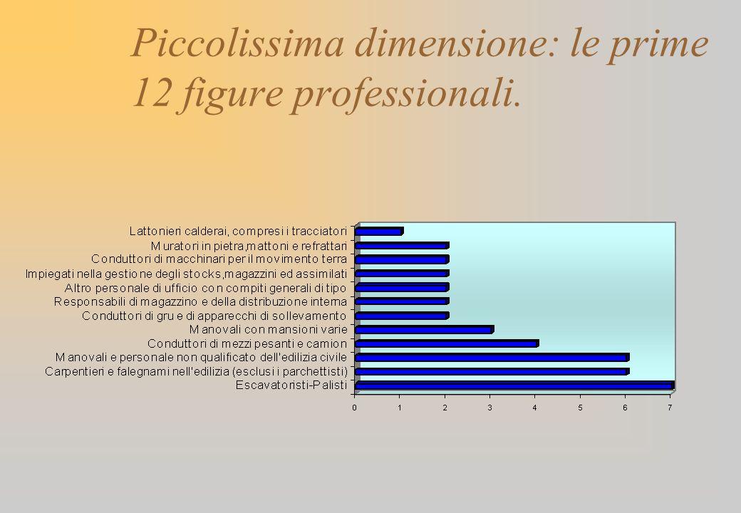 Piccolissima dimensione: le prime 12 figure professionali.