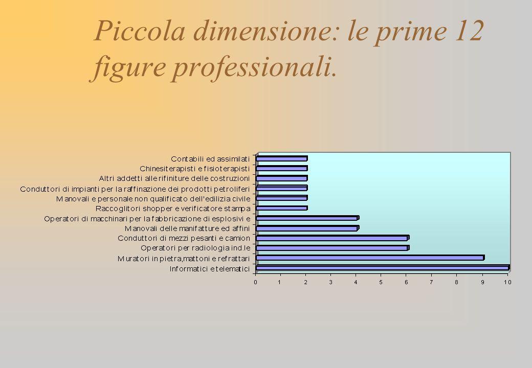 Piccola dimensione: le prime 12 figure professionali.